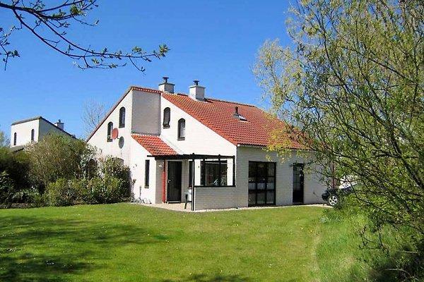Texel Ferienhaus Inselprinz à De Cocksdorp - Image 1