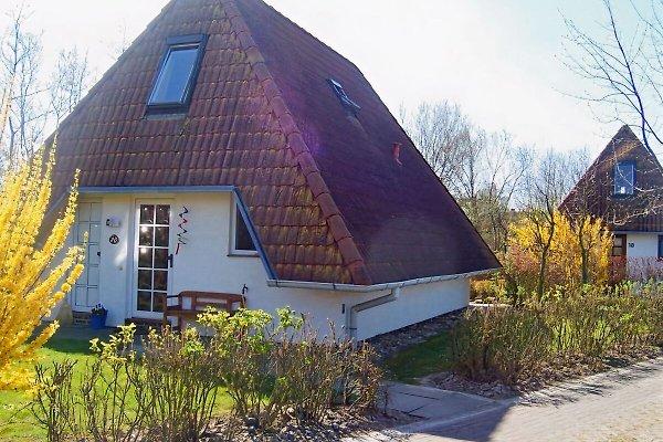 Ferienhaus Gehringer, Dorum à Dorum-Neufeld - Image 1
