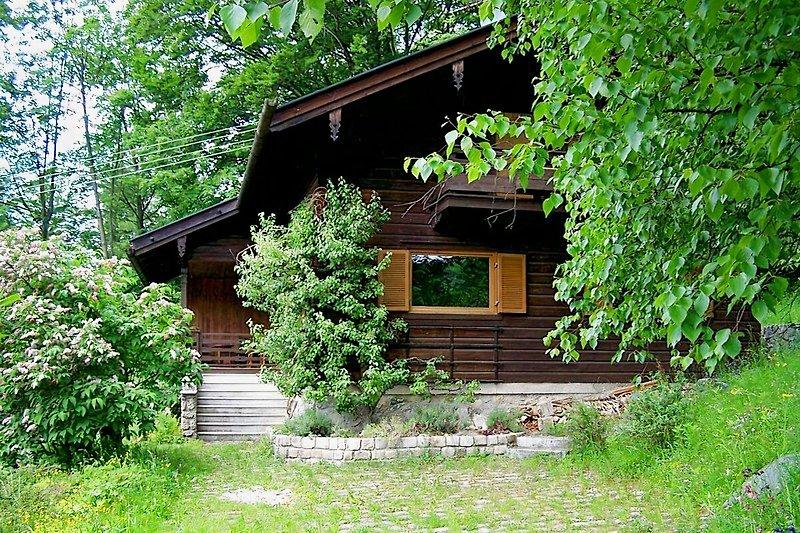 Ferienhaus mit großem Garten, ideal für Hunde