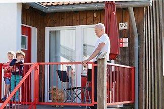 FW - Gerda - direkter Hundeauslauf