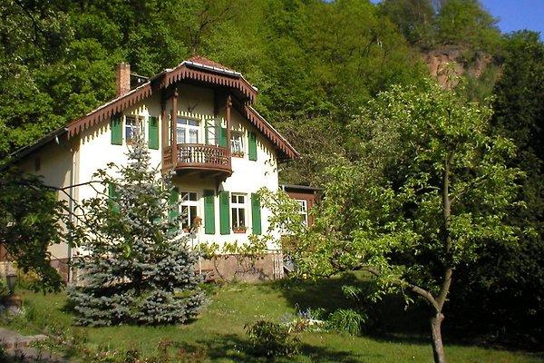 Ferienwohnung im Lößnitzgrund in Radebeul - Bild 1