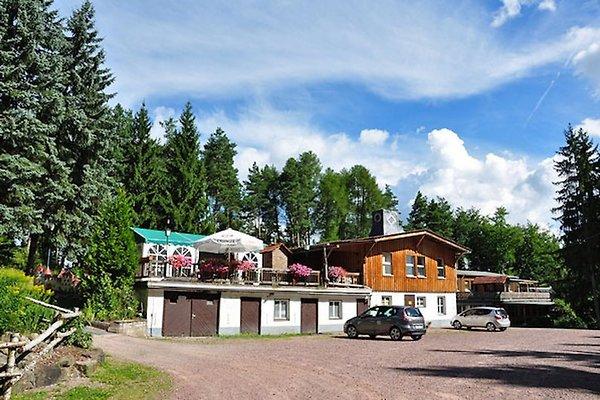 Pension Waldhof in Frankenhain - Bild 1