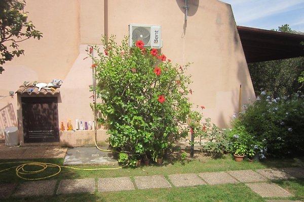 Piccola casa con giardino casa vacanze in santa for Piccola casa produttrice di cianografie