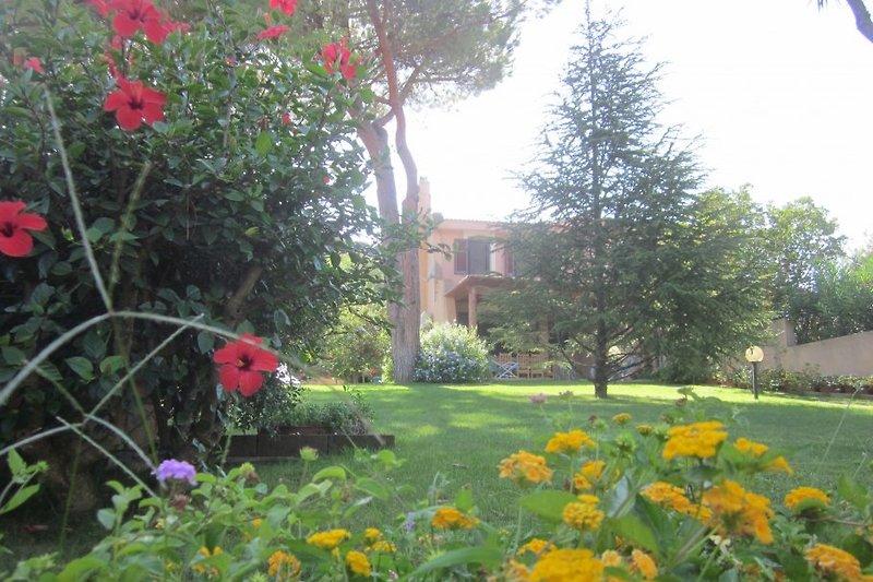 Piccola casa con giardino in Santa Margherita di Pula - immagine 2