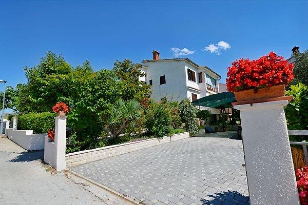 Ferienwohnung Grabar (4+1) in Pula - Bild 1