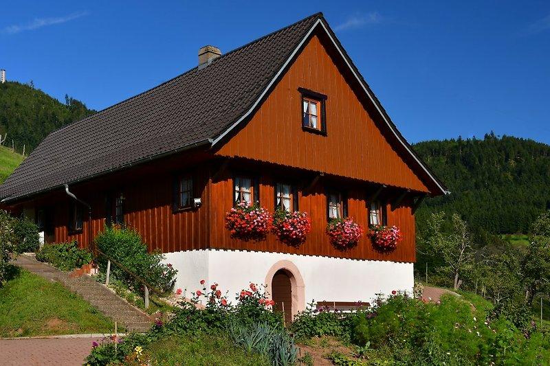 Ferienhaus im Schwarzwald zum allein bewohnen für 2 - 6 Personen  in ruhiger Lage ohne Durchgangsverkehr, Natur pur