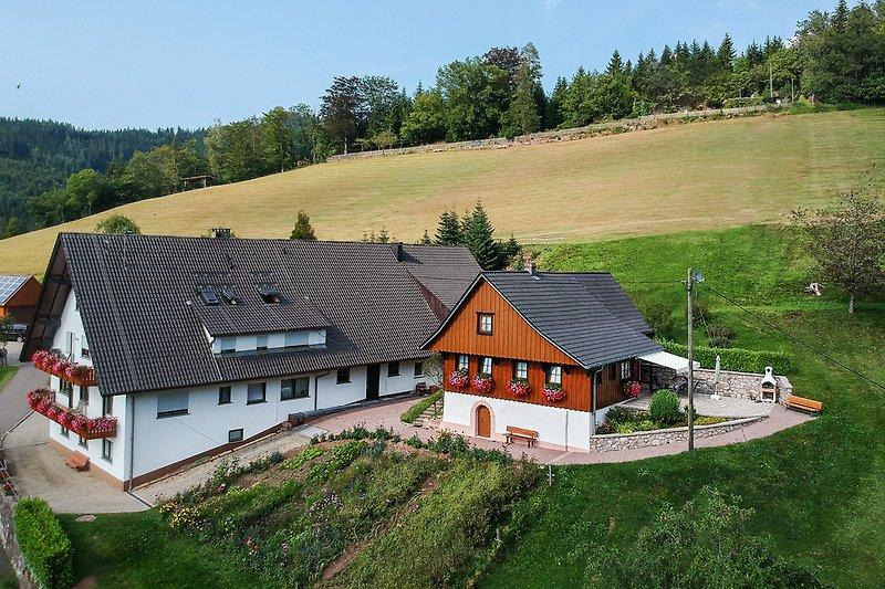 Ferienhaus - Ferienwohnungen Müllerbauernhof
