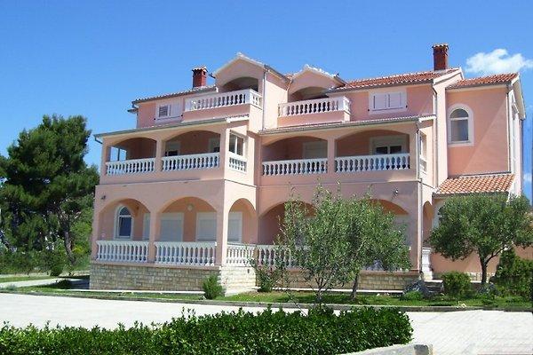 Las habitaciones, apartamentos + Linda y Mario en Zadar - imágen 1