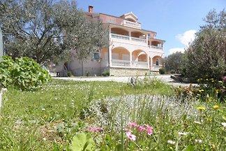 Zimmer & Ferienwohnung  in Zadar
