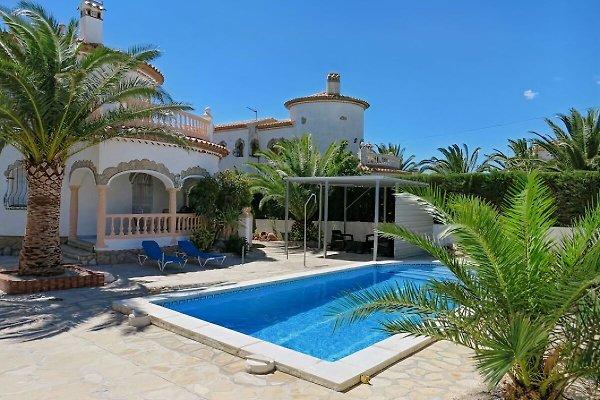 Villa Selina para 10 adultos. Y 2kind en Miami Playa - imágen 1