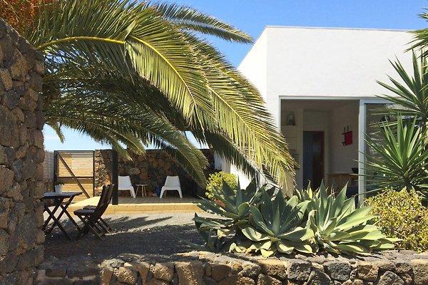 Ferienhaus Marke neue, moderne Wohnung in Lajares - Bild 1