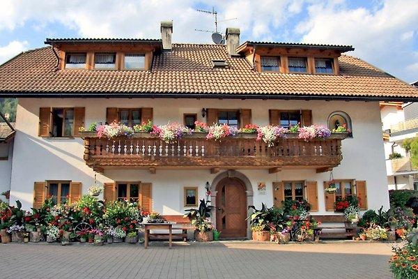 Pichlerhof Chienes-Alto Adige Dolomites à Kiens - Image 1