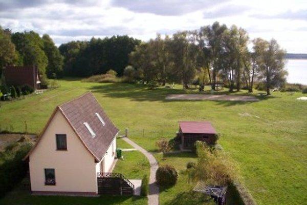 Ferienwohnung am Gr.Labussee in Zwenzow - Bild 1