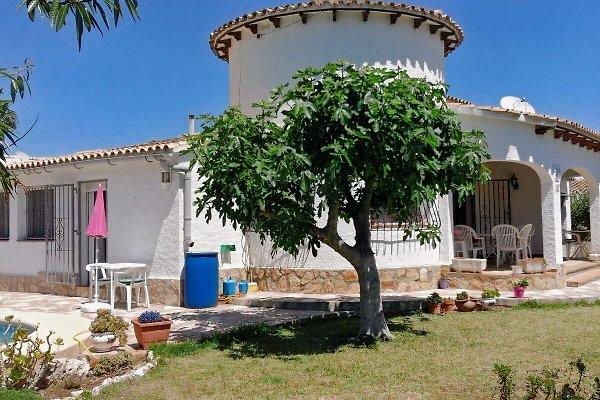 Ferienhaus Flotes 379 in Els Poblets - immagine 1
