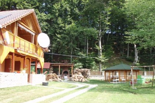 Ferienhaus Cristi in Avrig - Bild 1