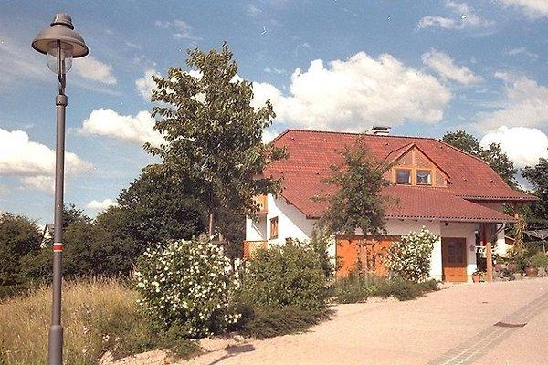 Belfina in Gemünden - immagine 1