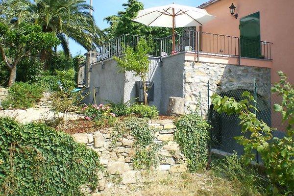 I 99 olivi - Ferienhaus Bianca in Imperia - Bild 1