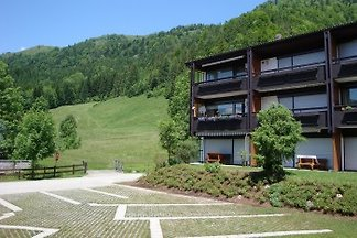 Apartament Walchsee/hase angle