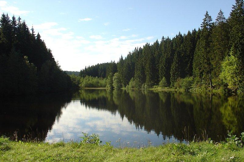 Hüttenteich -Unesco Weltkulturerbe- (600 m vom Chalet entfernt)
