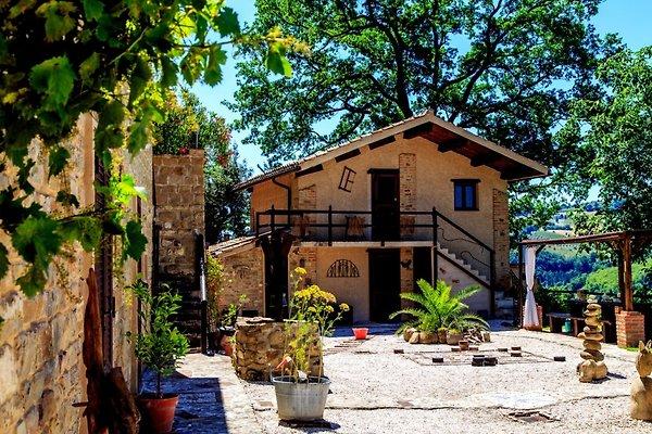 La casa de vacaciones Casa Cantalupo-Marken-Italien en Cupramontana - imágen 1