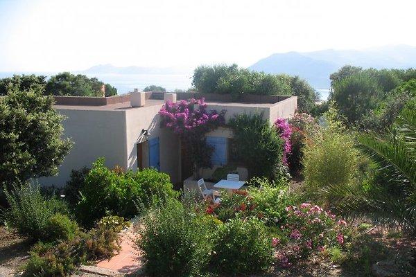 Villa Capicciolo à Occhiatana - Image 1