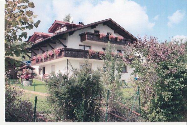 Haus Elfriede  in Ruhmannsfelden - immagine 1
