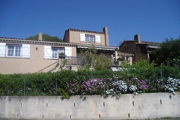 Villa con 2 TV separata in Appietto - immagine 1