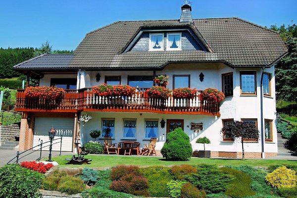 Sommeransicht Haus Dorothee