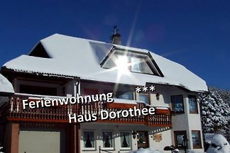 * * * Haus Dorothee, Winterberg