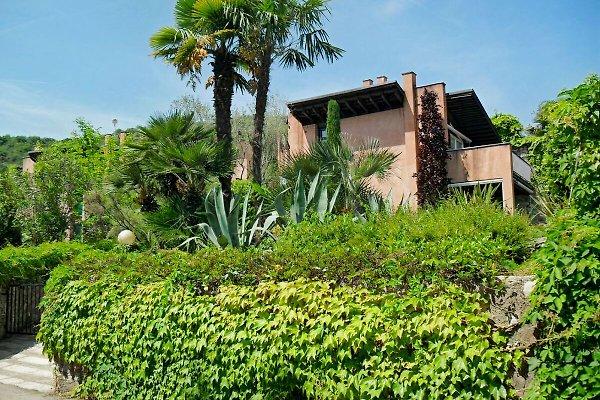 Casa Monica  Gardasee Castio/Marciaga in Castion - Bild 1