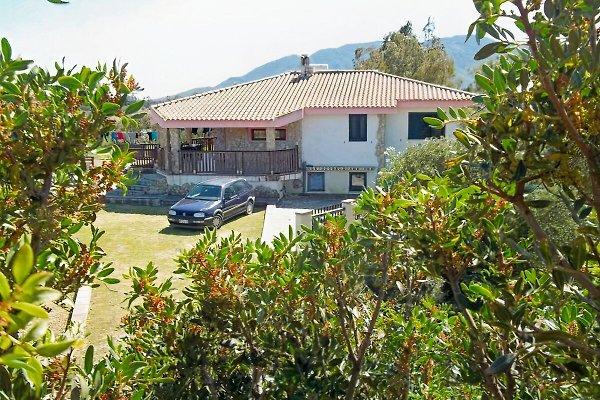 Bella Vista in Porto Corallo - Bild 1