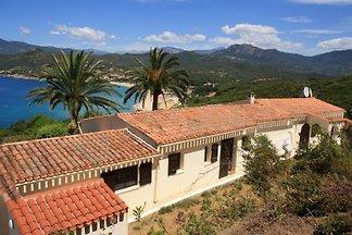 Villa Korsika 'Papillon au maquis'