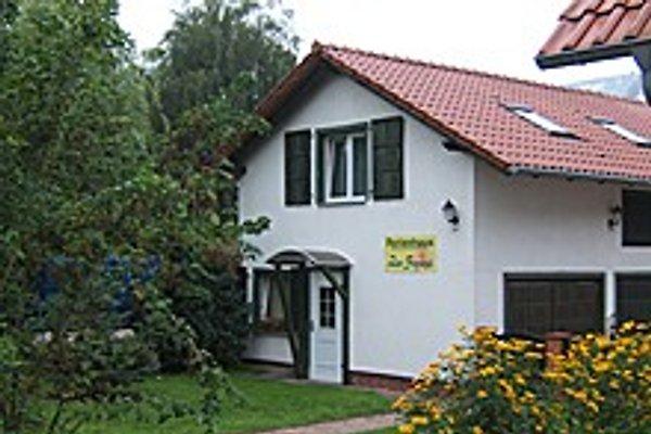 **** La Chambre Nénuphar  à Schwedt - Image 1
