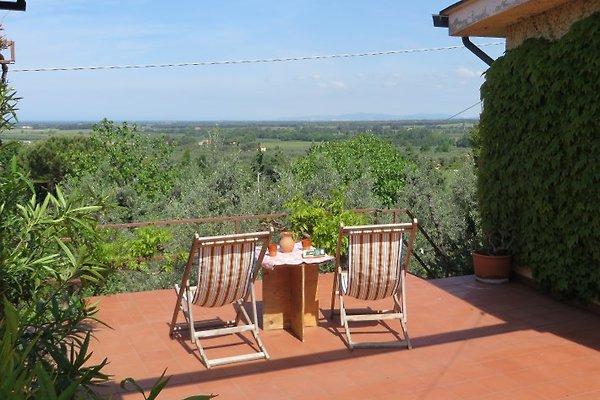 mit Genuss die wunderschöne Aussicht von der Terrasse aus geniessen