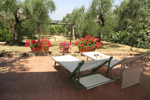 Casa Oliviera en Castagneto Carducci - imágen 1