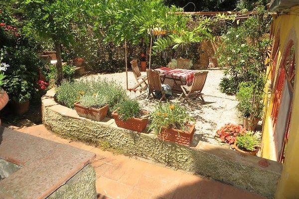 appartamento rosetta in Castagneto Carducci - immagine 1
