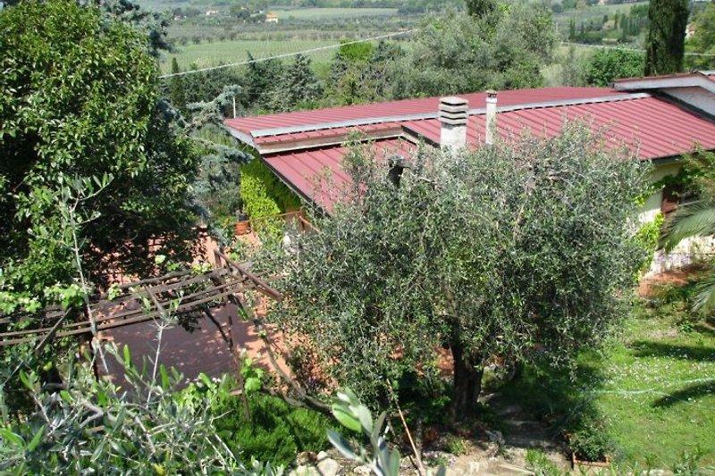 Das Haus von oben, eingebettet in grün