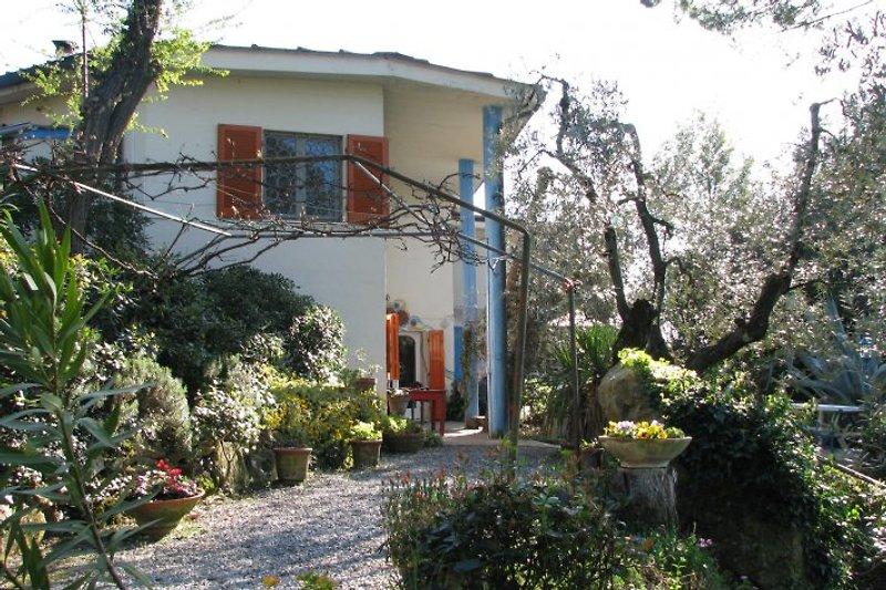 Casa Erminio steht in einem parkgrossen Garten mit viel grün