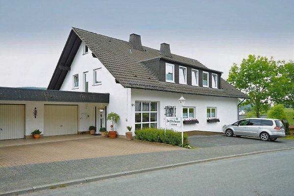 Lemmerblick en Winterberg - imágen 1