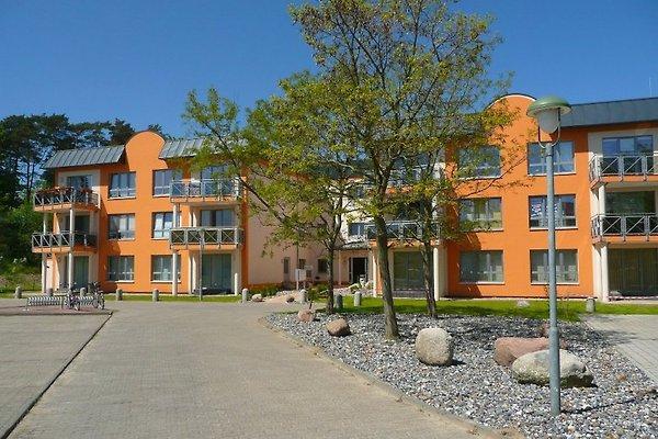 Appartement USINIXE  à Karlshagen - Image 1