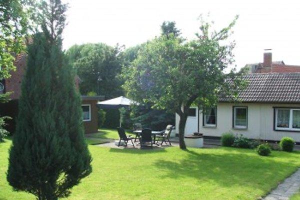 Ferienhaus Apfelblüte  à Harzgerode - Image 1