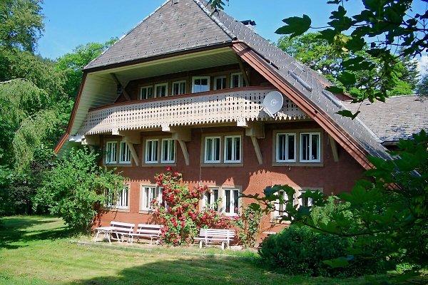 Haus Bacmeister in Menzenschwand - immagine 1