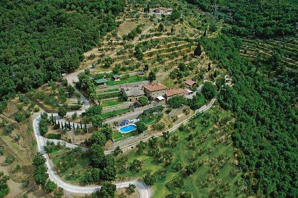 FARM COL DI LECCIO in Cortona - Bild 1