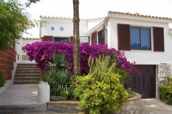 Détaché .16e Peniscola à Peñiscola - Image 1