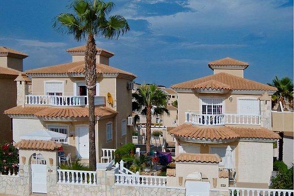 Maison de vacances Casa del Sol à San Miguel de Salinas - Image 1