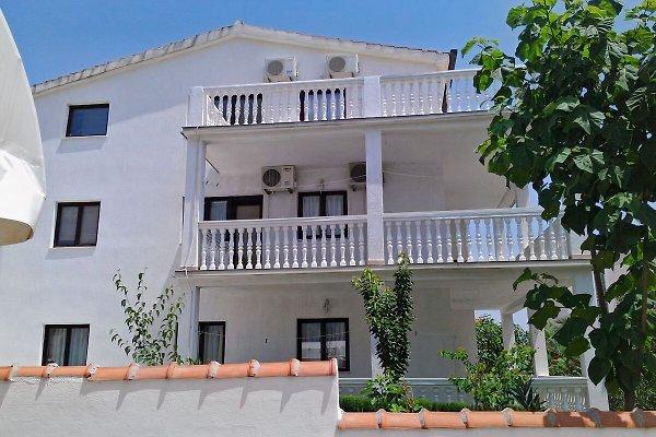 Apartments  Dusper  in Okrug Gornji - Bild 1