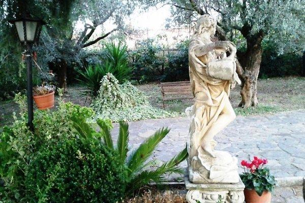 Villa Baiera in den Hügeln von Rom in Frascati - Bild 1