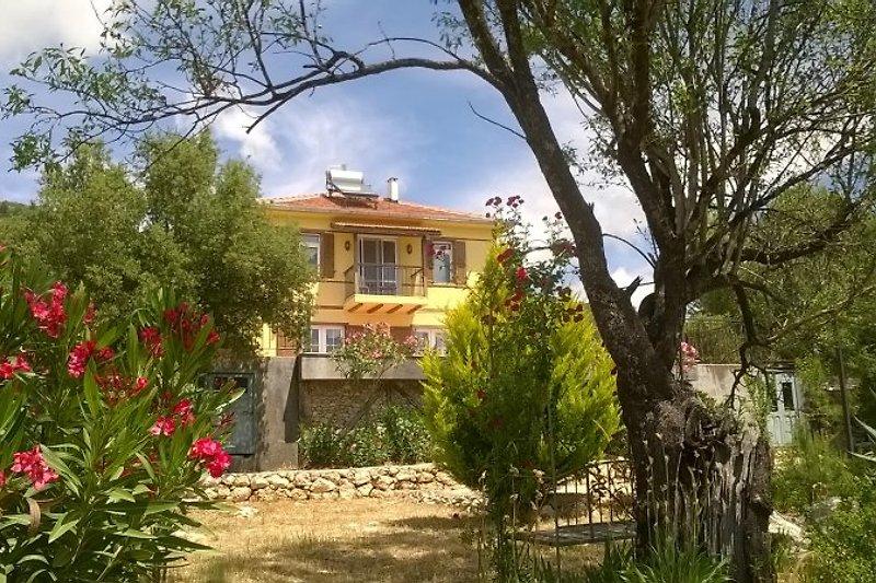 Willkommen in Villa Felen