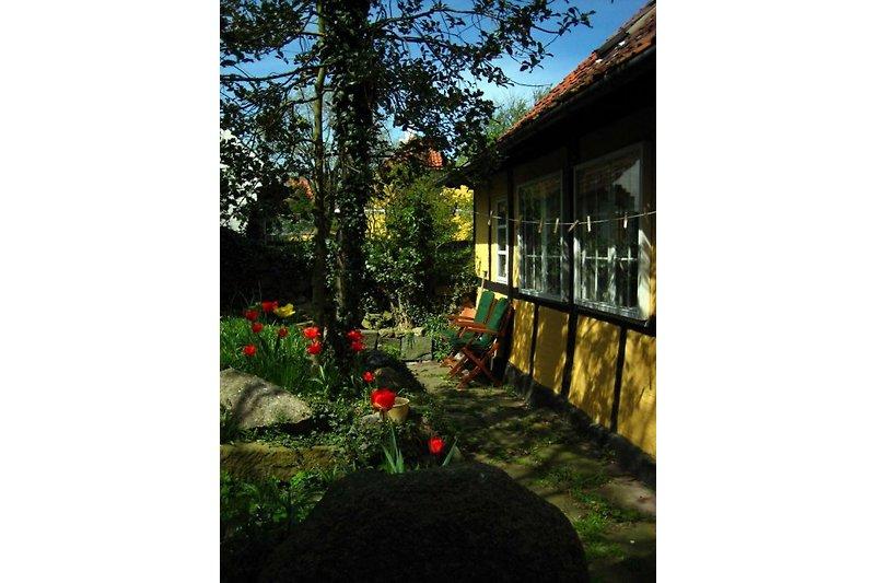 Ferienhaus Svaneke Bornholm