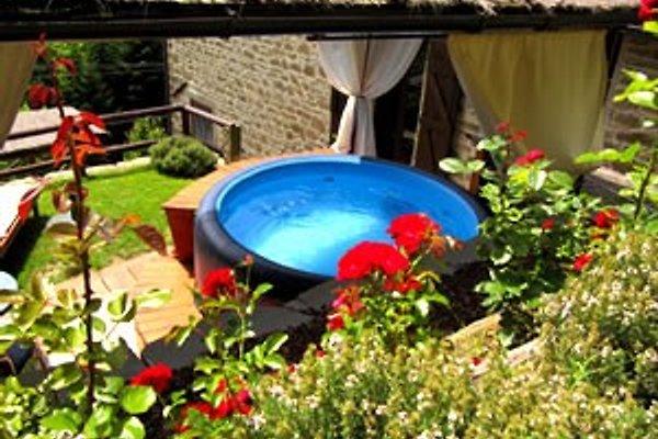 Toskana - Ferienhaus Lucia à Poppi - Image 1